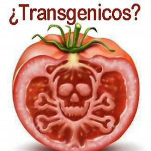 De los alimentos beneficios transgenicos pdf