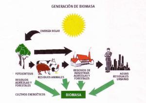 generacion de biomasa