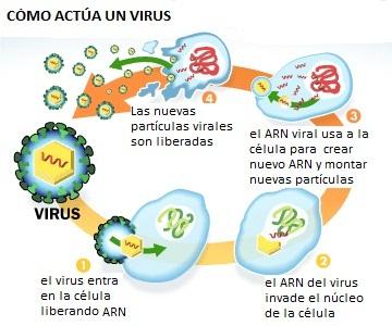 virus-danger-diagram