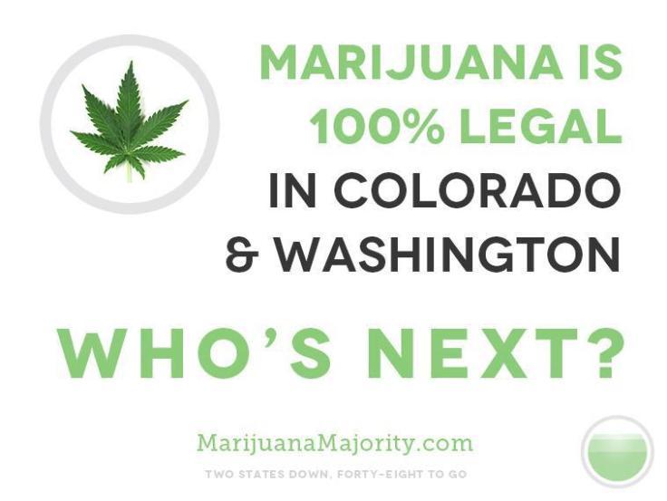 cannabis_legalizacion
