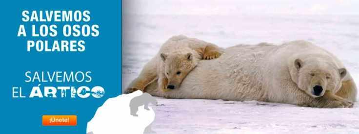 salvemos-artico-el-biocultural-ret