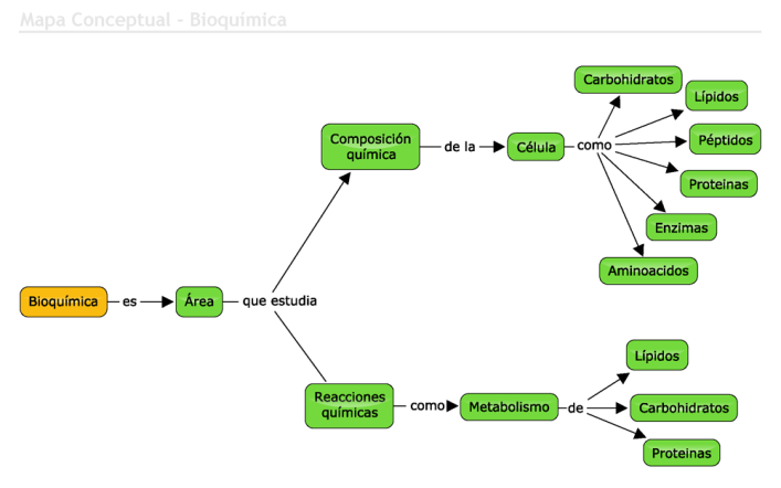 mapa_conceptual_bioquimica