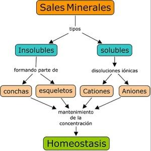 sales_minerales