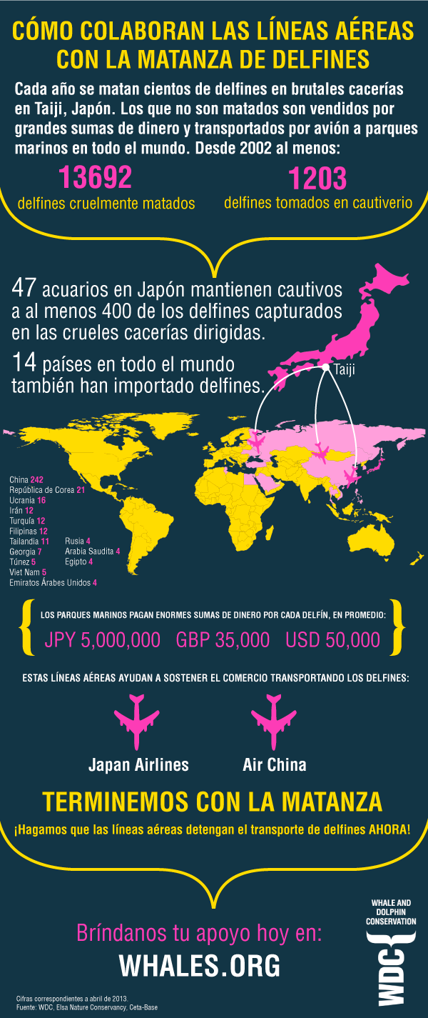 dhinfographic_es_full