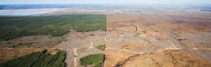 oil-sands-before&after800x2.jpg